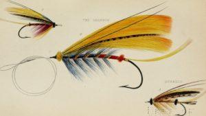 fly-tying